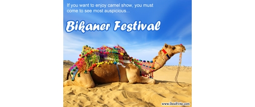 If you enjoy the camel show Bikaner Festival for only for you