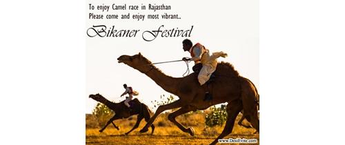Enjoy camel race in Rajsthan in Bikaner Festival