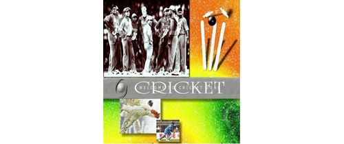 Cricket match/tournament/games