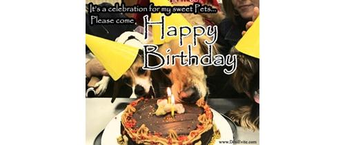 Pets Birthday Party Invitation